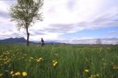 paesaggio (1)